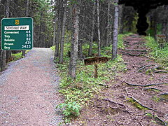 Click image for larger version.  Name:fork-in-the-road-1.jpg Views:37 Size:267.9 KB ID:343006