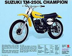 Click image for larger version.  Name:1974_TM250L_brochure_800.jpg Views:159 Size:104.1 KB ID:342489